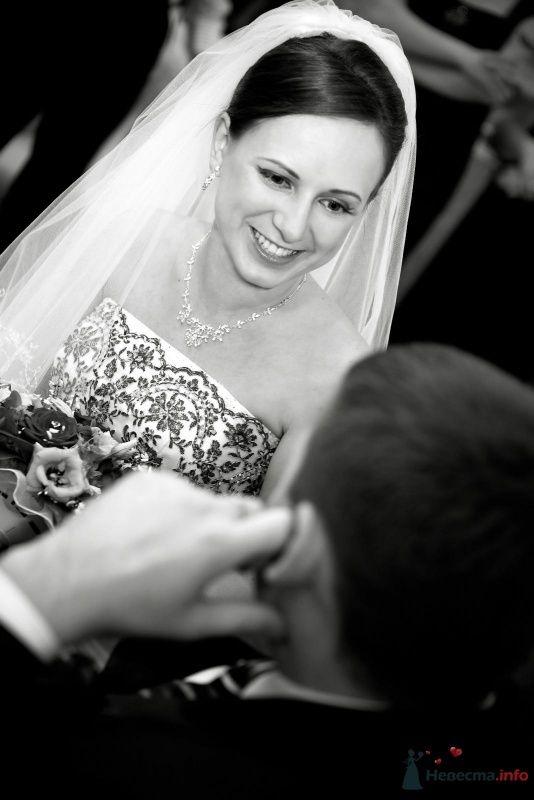 Фото 64532 в коллекции фотоработы Виктории Вяльченковой - Свадебный фотограф - Виктория Вяльченкова