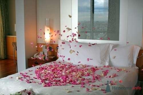 """Фото 17215 - Отель """"Swissotel Красные Холмы"""""""