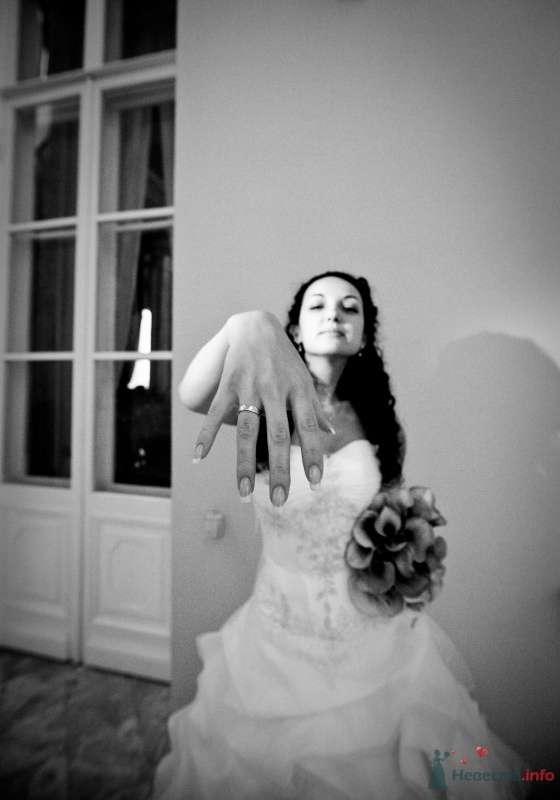 Фото 46648 в коллекции наша свадьба - Pantera25