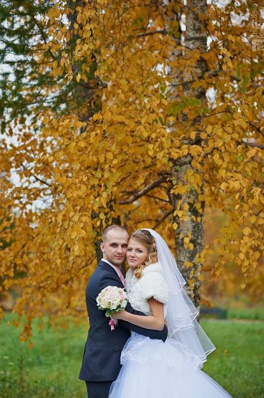Фото 2662297 в коллекции Свадебная фотография - Фотограф  Анастасия  Федотова