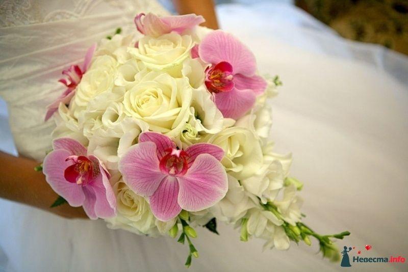 Свадебный букет орхидей фрезий, оптовая