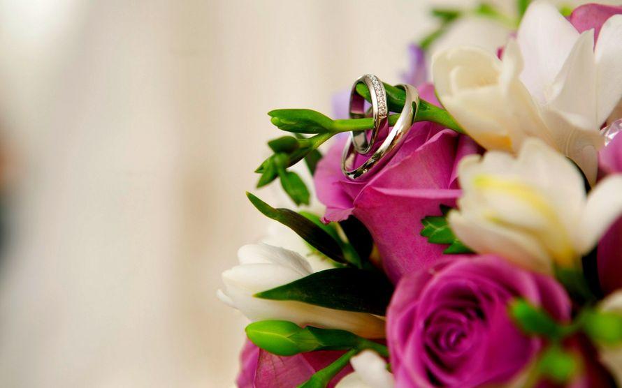 Фото 4659853 в коллекции Портфолио - Свадебный распорядитель Екатерина Захожая