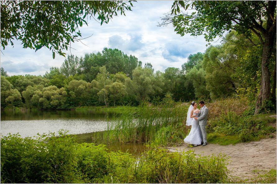 Фото 2794045 в коллекции Свадьба Ольги и Романа - Фотограф Надежда Карелина