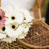 Букет невесты из белых и розовых гербер