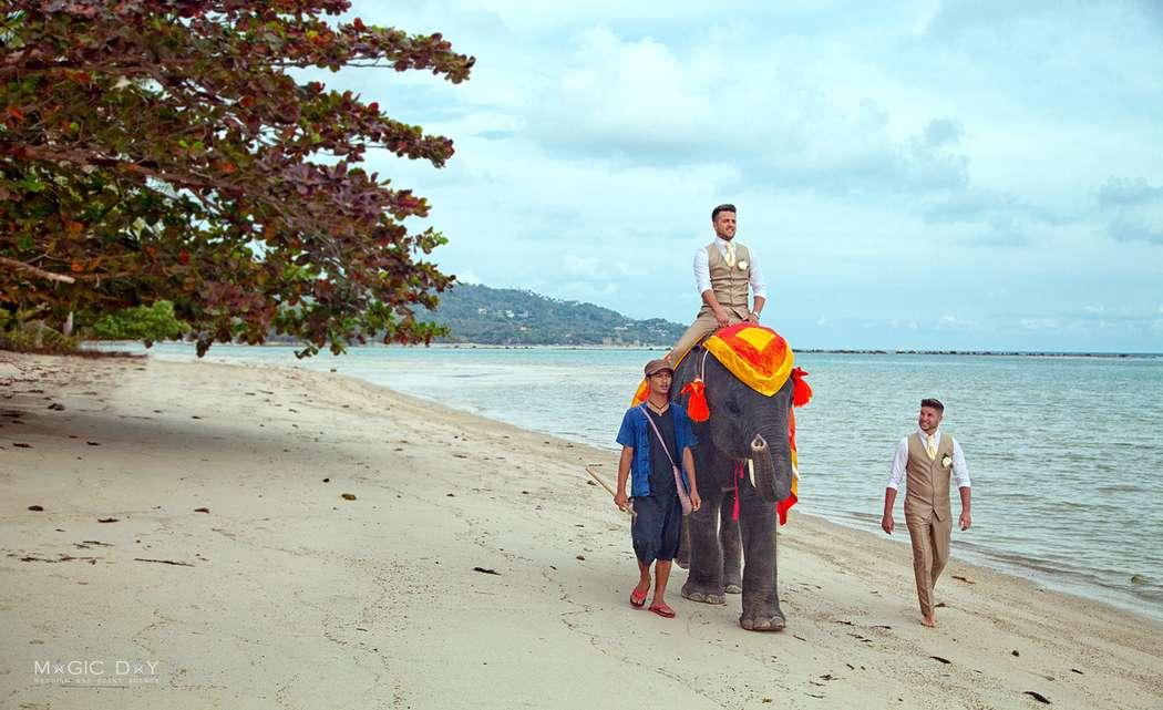 Свадебный фотограф на Сауми, Тайланд - фото 8973840 Фотограф Подчасова Анна на о. Самуи, Таиланд