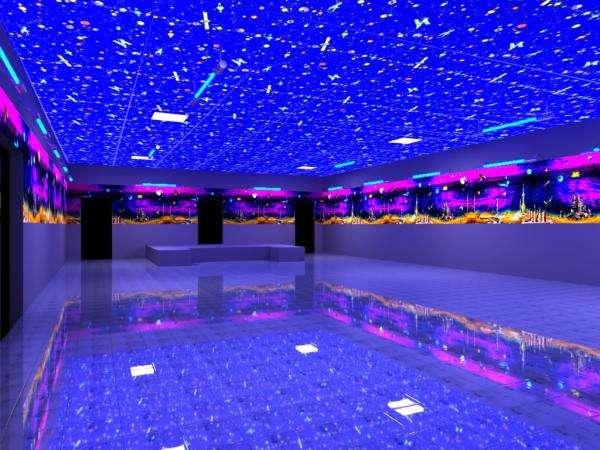 оформление ресторана светящимися в темноте картинами!!!  - фото 3043317 Компания Троя - организация свадеб