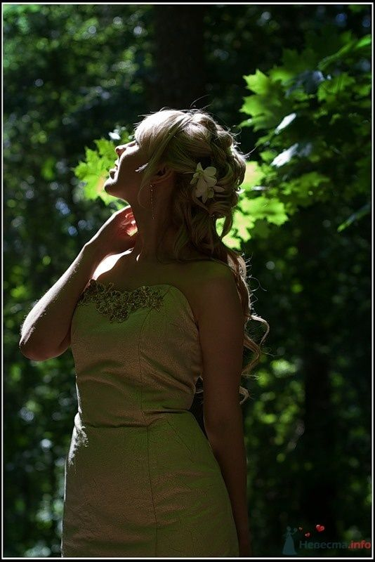 Фото 33313 в коллекции Мои фотографии - tsarina