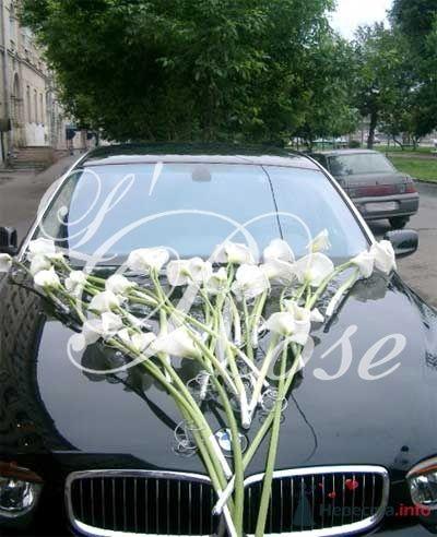 """Фото 17816 в коллекции Оформление авто - Галерея цветов """"L'Rose"""""""