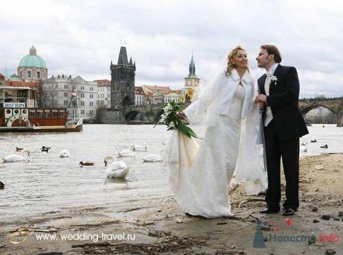 Фото 18083 в коллекции Свадьбы в Чехии