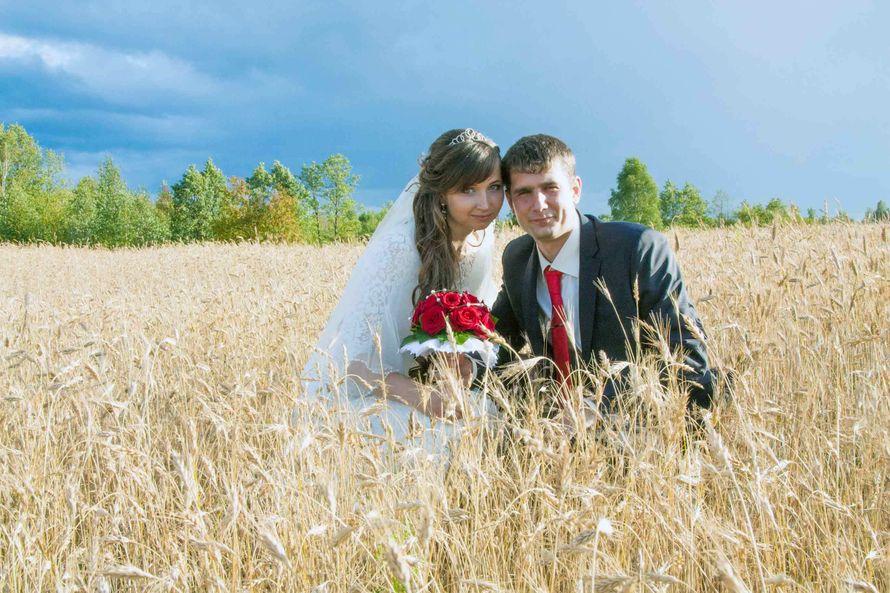 Фото 6818352 в коллекции Свадьба Александр и Марина - Студия Videoaleks - видео и фотосъёмка