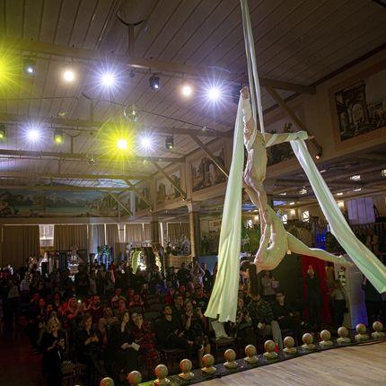 Воздушные акробаты на полотнах - шоу