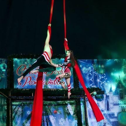 Воздушные гимнасты на полотнах - шоу