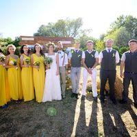 Жених и невеста их друзья и подружки в желтом