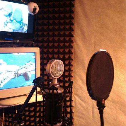 Запись песни на свадьбу в студии