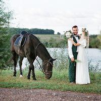 Жених и невеста, лошадь ест траву