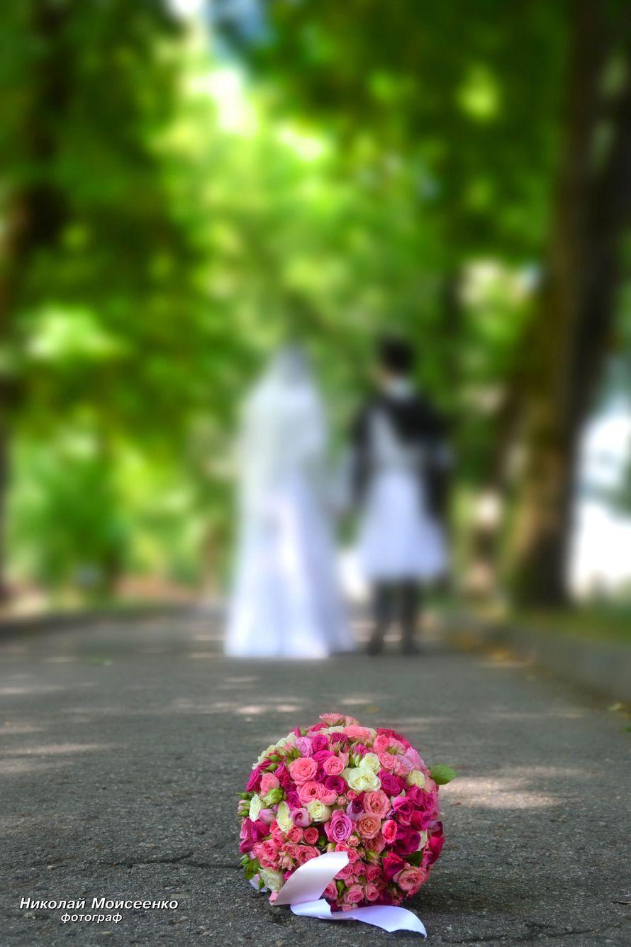 Фото 3102525 в коллекции Мои фотографии - Свадебный фотограф Николай Моисеенко