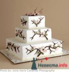 торт - фото 19193 Невеста01