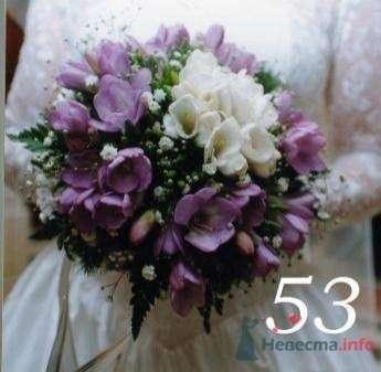фрезии - фото 19269 Невеста01