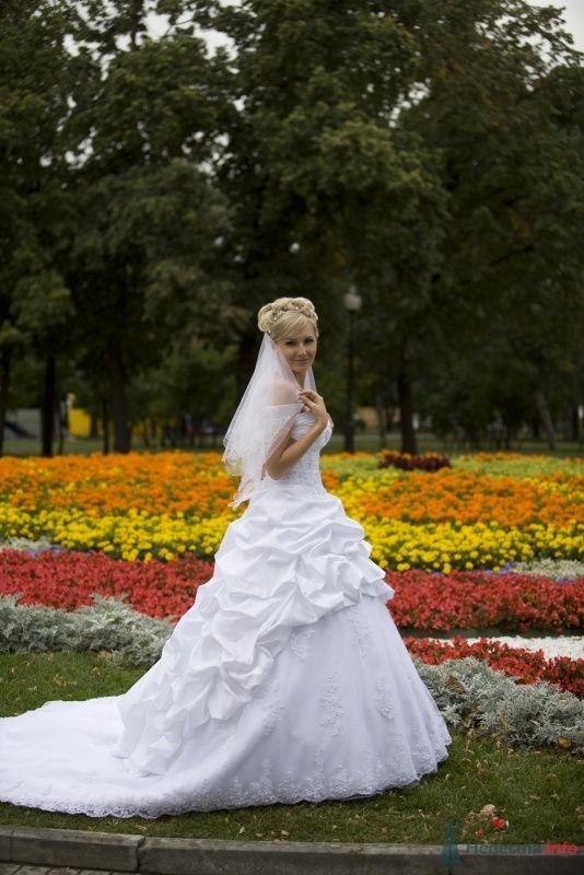 Фото 60820 в коллекции наша свадьба - Наталия Королева