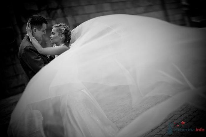 Жених и невеста стоят, прислонившись друг к другу, на фоне кирпичной - фото 40439 Starr