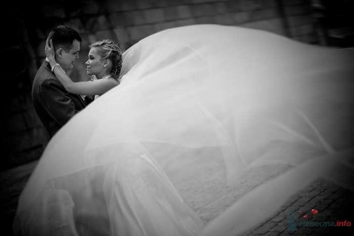 Жених и невеста стоят, прислонившись друг к другу, на фоне кирпичной тены - фото 40439 Starr