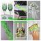 Зеленая свадьба, яблочная свадьба, весенняя свадьба