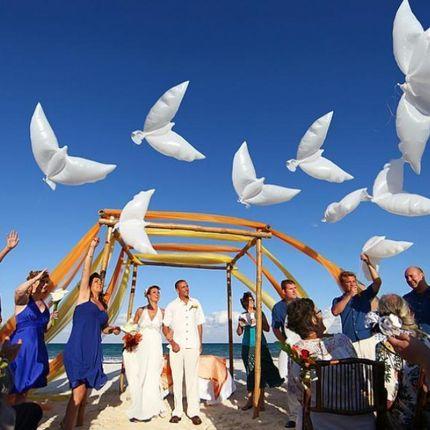 Биоголуби или воздушный голубь