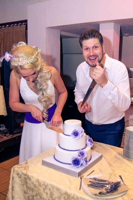 Фото 3409243 в коллекции Чудесная свадьба Романа и Ольги - Ведущая - Катрин Кузнецова