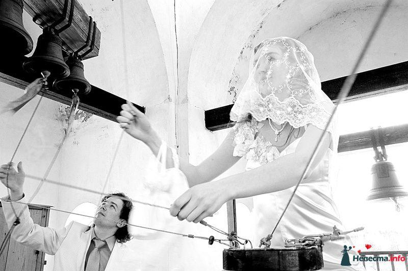 Фото 239469 в коллекции Фотографии со свадеб - Портрет-холл. Студия фотопортрета.
