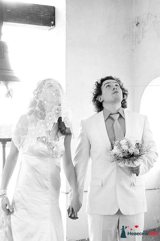 Фото 239472 в коллекции Фотографии со свадеб - Портрет-холл. Студия фотопортрета.