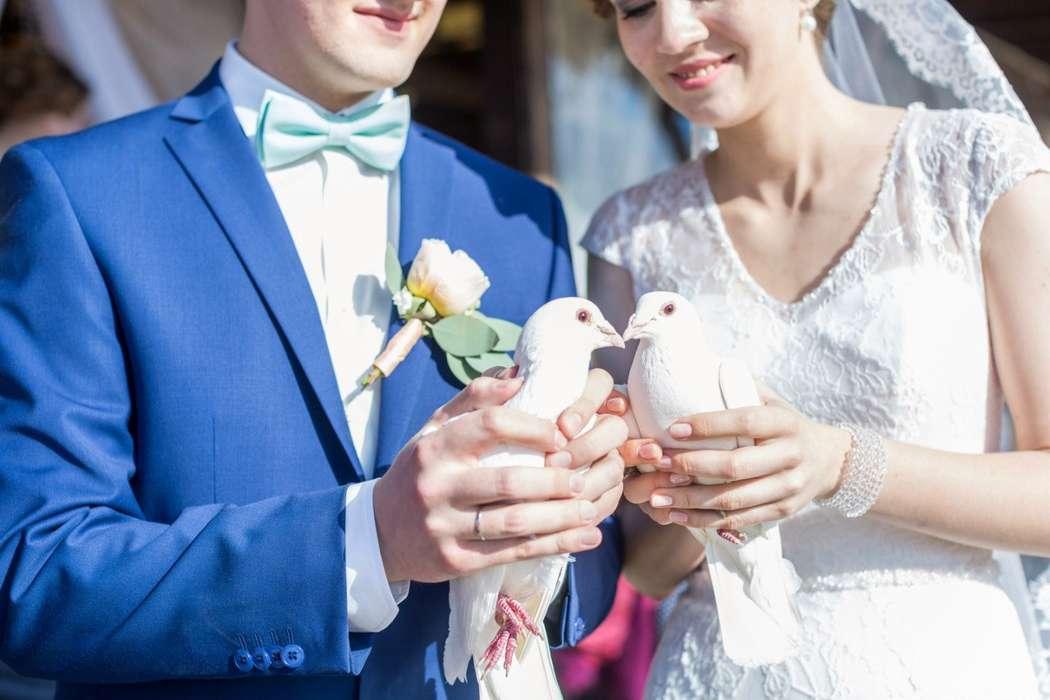 Фото 15887088 в коллекции Портфолио - Свадебное агентство Marry Bride