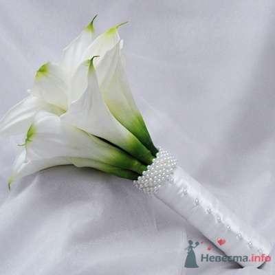 Фото 23413 в коллекции идеи для свадьбы - Вишневое море