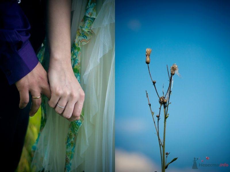 Фото 45577 в коллекции свадебные) - Sonya