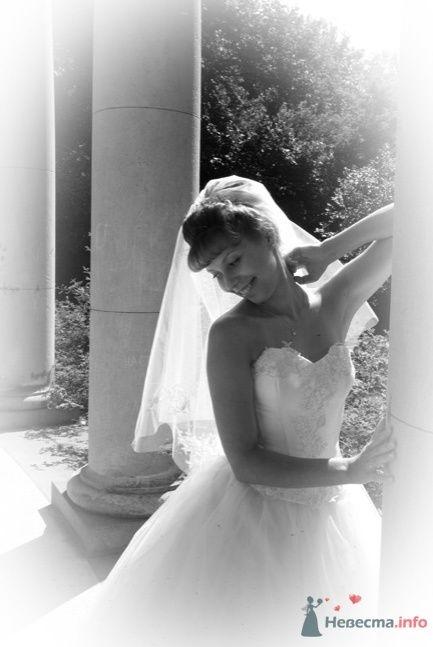 Фото 32988 в коллекции Свадьба   Паши и Маши - Marat Yakhin