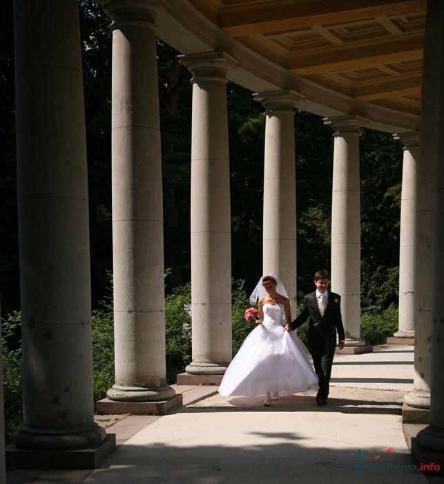 Фото 32999 в коллекции Свадьба   Паши и Маши - Marat Yakhin