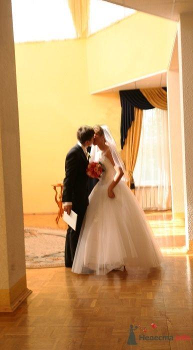 Фото 33011 в коллекции Свадьба   Паши и Маши