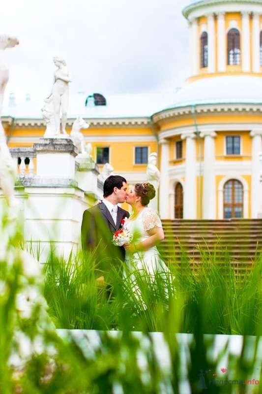 Любовь в траве )) - фото 37881 Kitana
