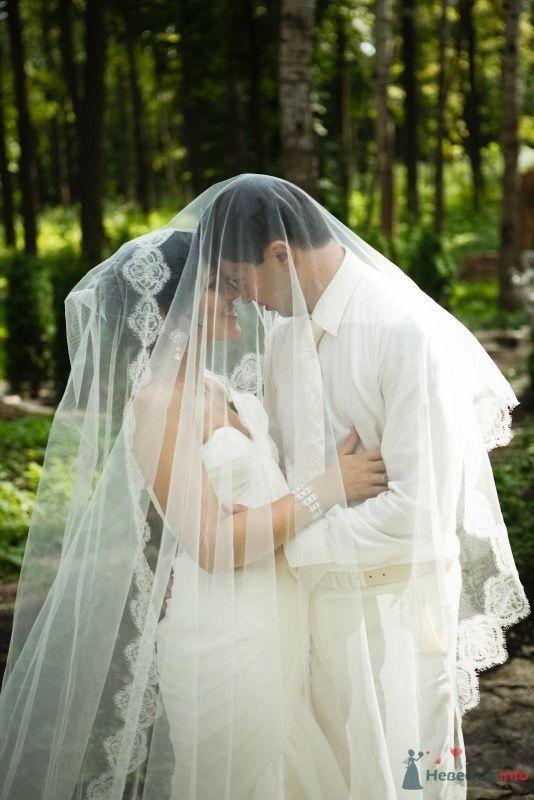 """Фото 49451 в коллекции Wedding или """"Скажи """"Пока"""" своей свободе, Крошка!"""""""