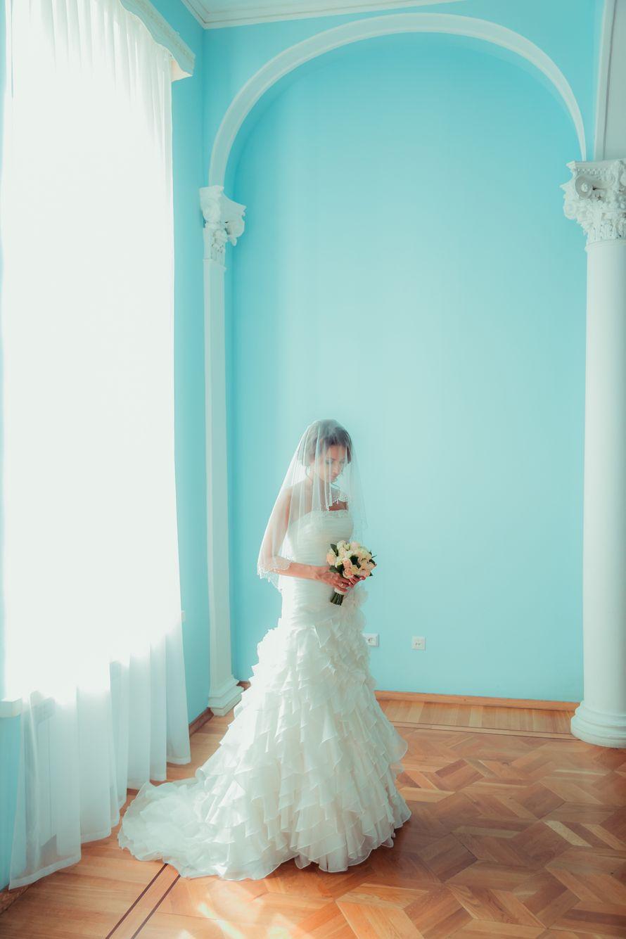 Фото 14128326 в коллекции Портфолио - Фотограф Ольга Агапова