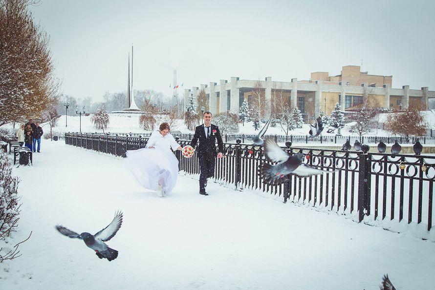 Фото 3632447 в коллекции Портфолио - Фотограф Анна Филоненко