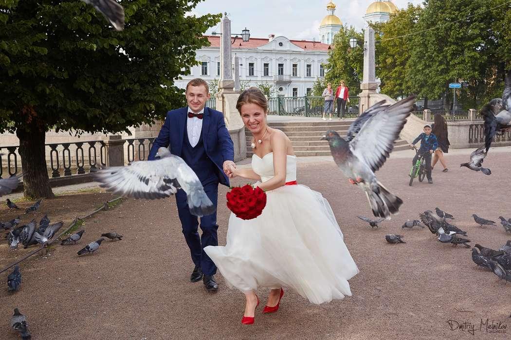 Фото 6790474 в коллекции Портфолио - Фотограф Дмитрий Мельников