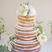Открытой торт рустик