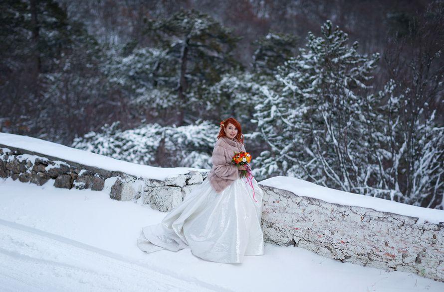 Фото 18117718 в коллекции Портфолио - Фотограф Сергей Титов