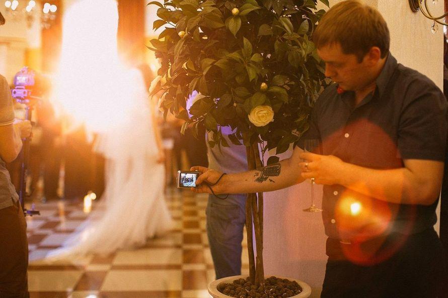 Фото 5646844 в коллекции Портфолио - Свадебный организатор Надежда Римская