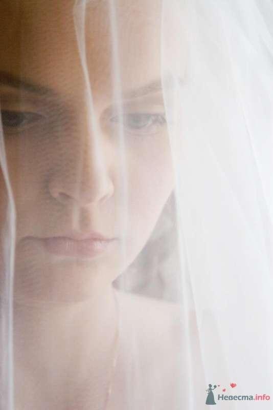 Фото 47476 в коллекции моя свадебка! - Автоледи