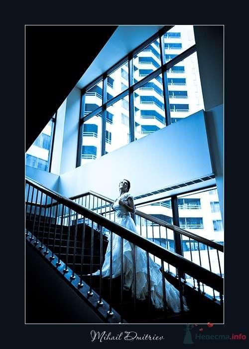 """Фото 32005 в коллекции Мои фотографии - Свадебная компания """"KST"""""""