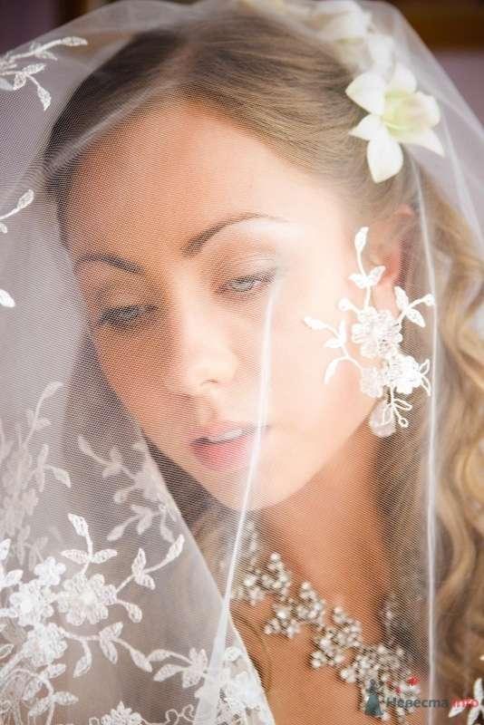 Фото 52414 в коллекции свадьба  - Arina