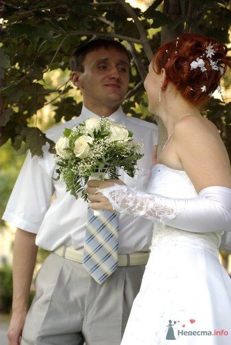 Фото 35323 в коллекции Наша свадьба - Катринка@Leopardik