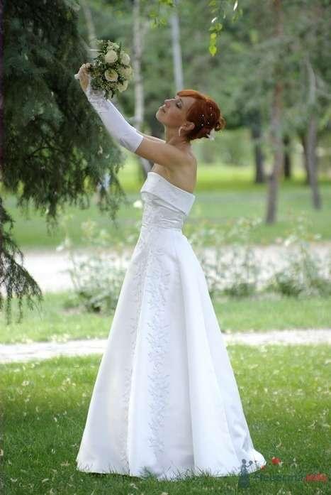 Фото 35337 в коллекции Наша свадьба - Катринка@Leopardik