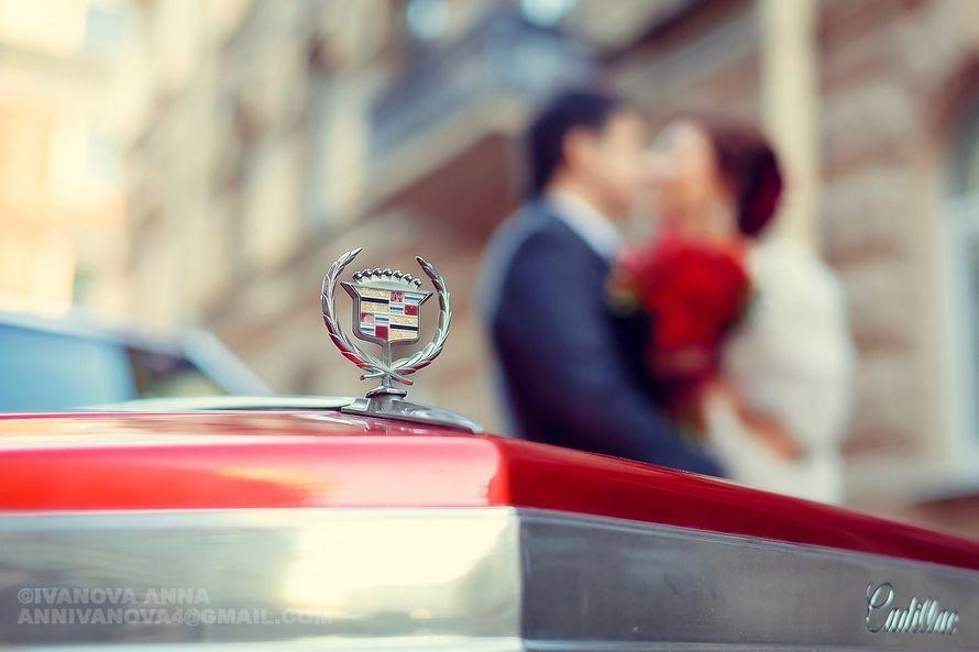 Свадебный фотограф Анна Киреева   +79215909183 - фото 10767038 Фотограф Анна Киреева